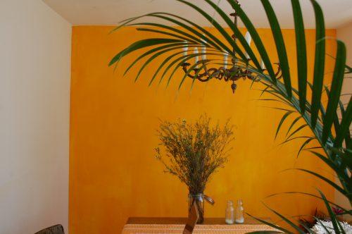 planten oranje muur bloemen